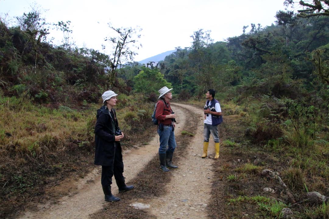 Monitorering af El Oro Parakeet. Fra venstre Bente, David og Diego. Buenaventura, El Oro, Ecuador.