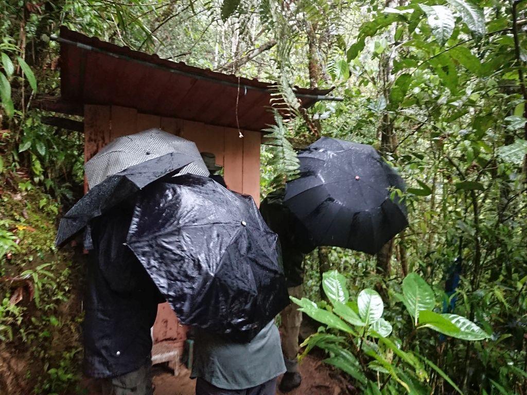 """Regnen gjorde ikke oplevelsen mindre for deltagerne fra """"Sunbird Tours"""". Copalinga, Zamora, Ecuador."""