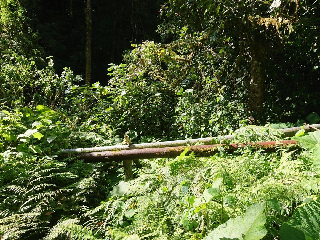 Rørledningerne, der har givet navn til Pipeline Trail. Boquete, Chiriquí, Panamá.