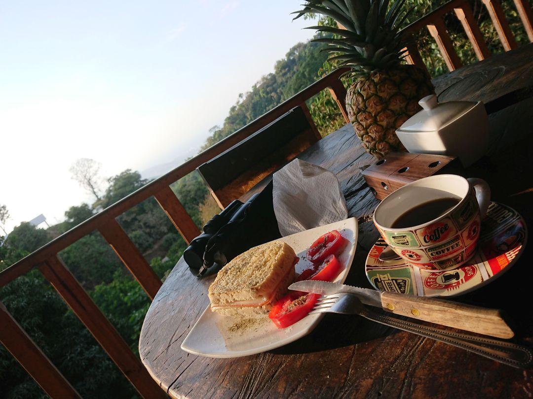 Fuglekiggere har brug for kaffe og mad. Minca, Sierra Nevada de Santa Marta, Colombia.