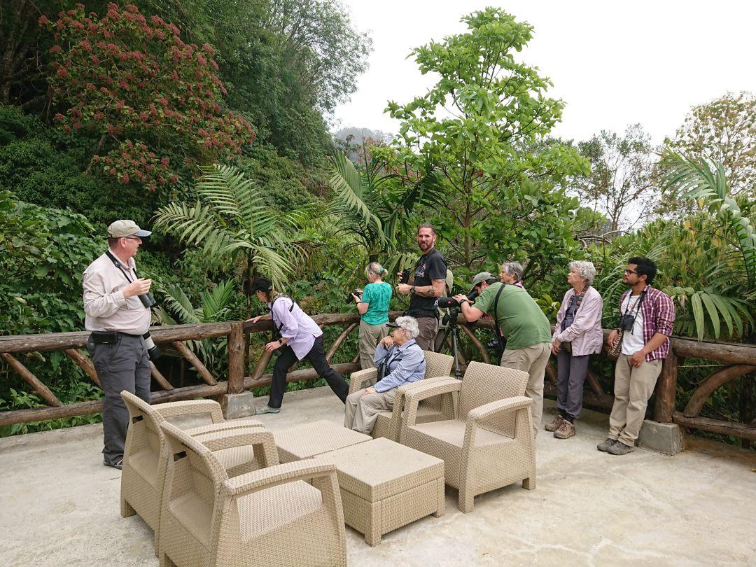 Et hold fuglekiggere på fuglerejse med selskabet Fieldguides kigger efter den endemiske Santa Marta Brushfinch.