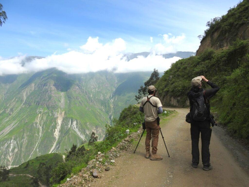Fuglekigning på kanten. Santa Eulalia dalen, Peru.
