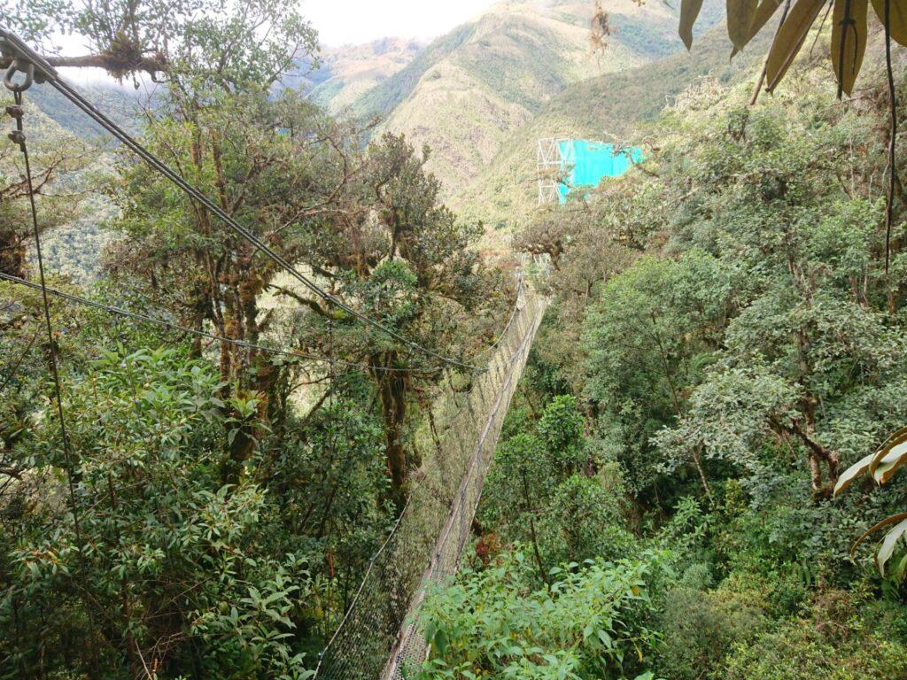 SuspentionBridgeWayqecha, Manu Road, Peru
