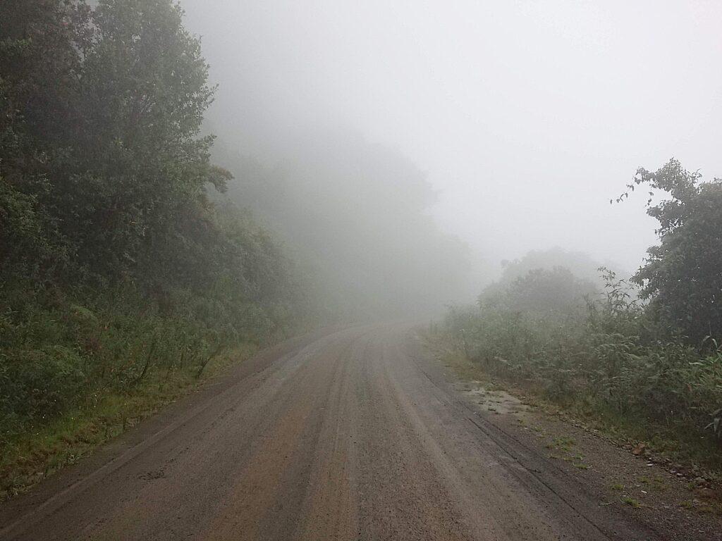 MistyCloudforest, Den berømte Manu Raod
