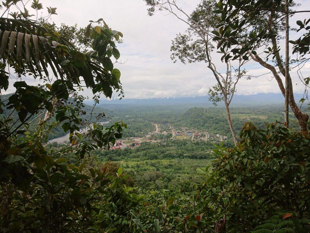 Pillcopata i Amazonas, Villa Carmen Biologiske Feltstation, Peru.